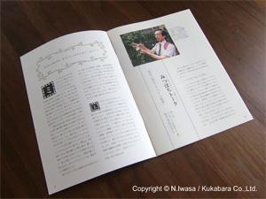 NPOみつばち百花2