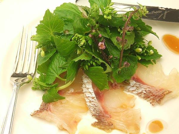はちみつを使ったアイデアいろいろユーカリはちみつアイアンバーク花わさび桜鯛のカルパッチョ4