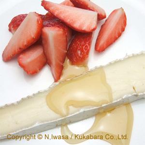 はちみつ講座鳴海中日文化センター短期講座はちみつとチーズのマリアージュ