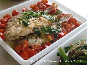 NHK文化センター豊橋教室「はちみつでクッキング!」2011年10月~2012年3月B