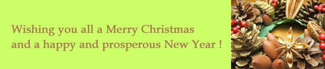 はちみつを使ったアイデア色々クリスマスのお菓子ショートブレッド1